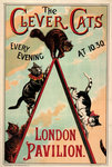The Clever Cats by Louis Wain - print