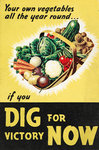 Dig for Victory Now by Ministry of Information - print
