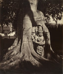 Deification stele with figure of Harihara by Samuel Bourne - print