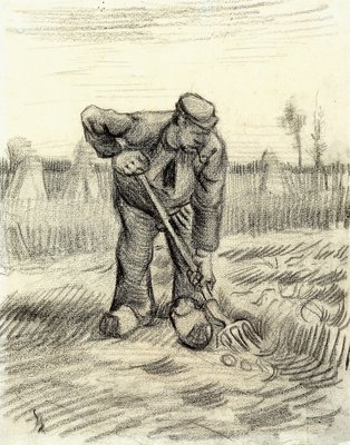 Potato Gatherer Wall Art & Canvas Prints by Vincent Van Gogh