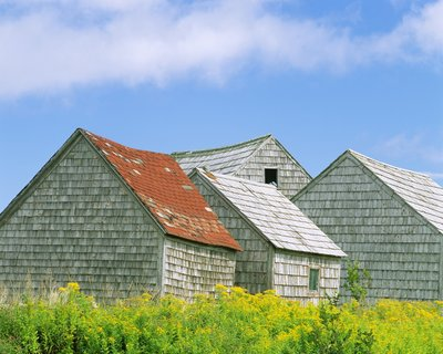 Row of Old Shingle Barns in Field Wall Art & Canvas Prints by William Manning