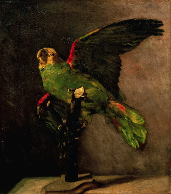 The Green Parakeet Postcards, Greetings Cards, Art Prints, Canvas, Framed Pictures & Wall Art by Vincent Van Gogh