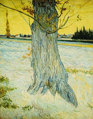 The Old Yew Wall Art & Canvas Prints by Vincent van Gogh