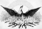 Engraving of Phoenix Rising from Flames Postcards, Greetings Cards, Art Prints, Canvas, Framed Pictures, T-shirts & Wall Art by William Blake
