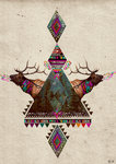 Voice of the Forest Fine Art Print by Kris Tate