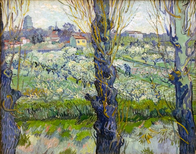 Orchard in Blossom with View of Arles Fine Art Print by Vincent Van Gogh