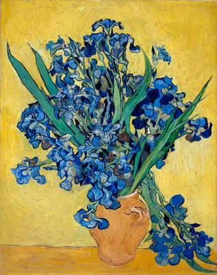 Irises Fine Art Print by Vincent Van Gogh