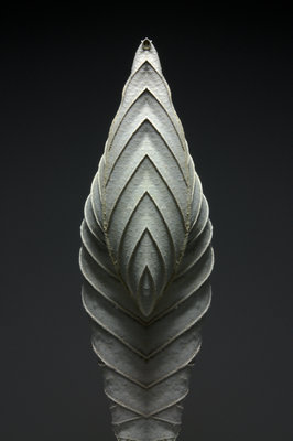 Leaf Sculptures 1 Fine Art Print by Annie Walters