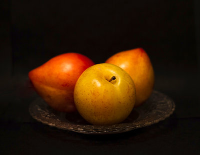 Three Plums Fine Art Print by Christine Blanchin dos Santos