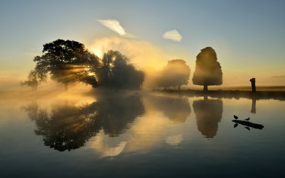 Morning in Bushy Park Fine Art Print by Kasia Nowak
