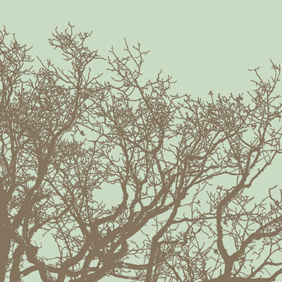 Winter Tree II Fine Art Print by Erin Clark