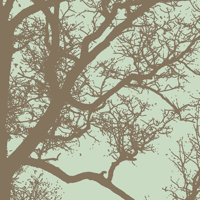 Winter Tree IV Fine Art Print by Erin Clark