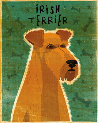 Irish Terrier Fine Art Print by John Golden