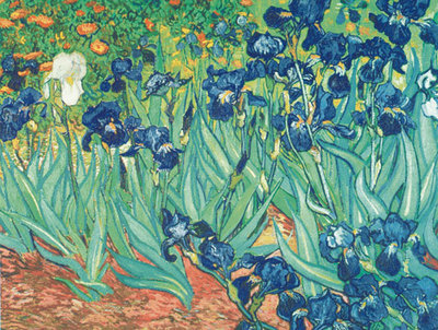 Irises in the Garden Fine Art Print by Vincent Van Gogh