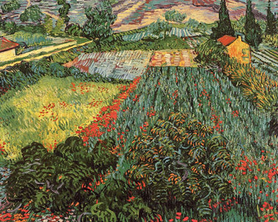 Field of Poppies, Saint-Remy, c. 1889 Fine Art Print by Vincent Van Gogh