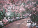 Azalea Walk Fine Art Print by Tony Saladino
