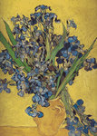 Irises in Vase Fine Art Print by Claude Monet
