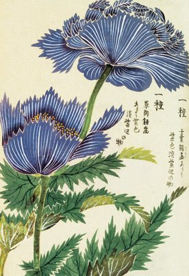 Honzo Zufu [Blue Flower] Postcards, Greetings Cards, Art Prints, Canvas, Framed Pictures, T-shirts & Wall Art by Kan'en Iwasaki