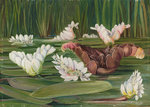 420. A South African Water-Plant in Flower and Fruit. Fine Art Print by Marianne North