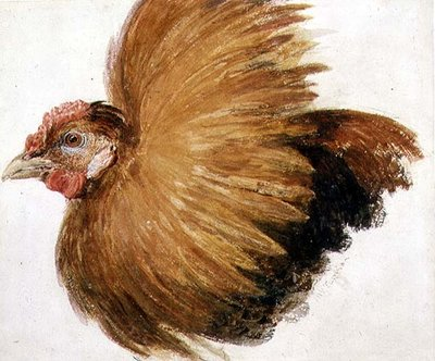 Game-Cock, from The Farnley Book of Birds, c.1816 by Joseph Mallord William Turner - print