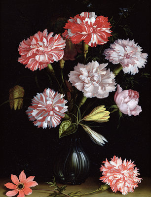 Floral Study: Carnations in a Vase Wall Art & Canvas Prints by Balthasar van der Ast