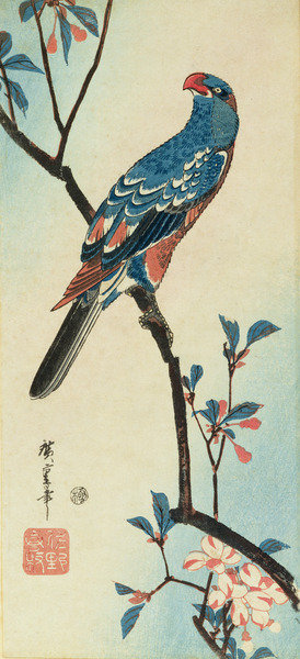 Parrot on a Branch by Ando or Utagawa Hiroshige - print
