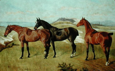 Three Horses: Whissendine, Swallow and Tiptop, 1886 by George Paice - print