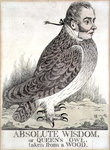 Absolute Wisdom or Queens Owl Taken from a Wood by Cuthbert Brodrick - print