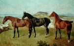 Three Horses: Whissendine, Swallow and Tiptop, 1886 by English School - print