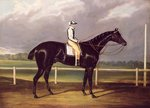 Jerry, Winner of the St. Leger in 1824 by Sir John Gilbert - print