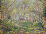 Silver Birches Postcards, Greetings Cards, Art Prints, Canvas, Framed Pictures, T-shirts & Wall Art by Alfred Sisley
