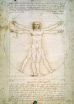Vitruvian Man Postcards, Greetings Cards, Art Prints, Canvas, Framed Pictures, T-shirts & Wall Art by Leonardo da Vinci