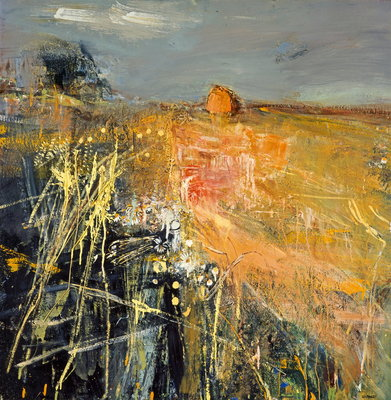 Summer Fields Wall Art & Canvas Prints by Joan Eardley