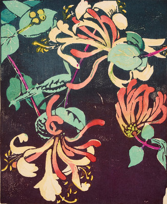 Honeysuckle Fine Art Print by Mabel Royds