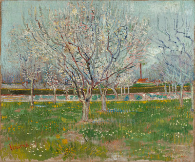 Orchard in Blossom (Plum Trees) Fine Art Print by Vincent Van Gogh