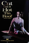 Cat on a Hot Tin Roof - print