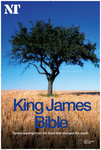 King James Bible: the 12 extracts - print