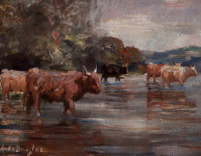 Highland Cattle in a landscape Fine Art Print by Andrew Douglas