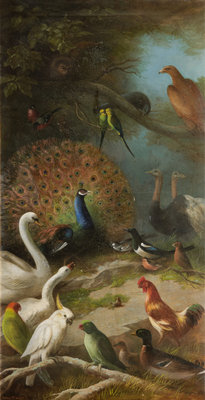The Parliament of Birds Wall Art & Canvas Prints by John Bucknell Russell