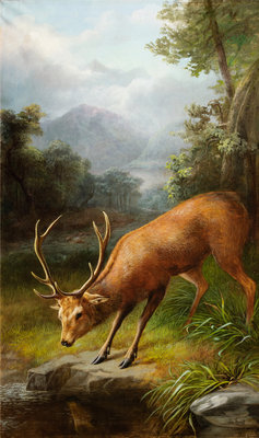 The Stag Looking into the Water Wall Art & Canvas Prints by John Bucknell Russell