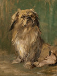 A Pekinese: Mr Wu 66.7x59 by Jacob Bogdany - print