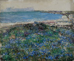 Blue Flax, Brighouse Bay by Edward Atkinson Hornel - print