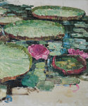 Water-lilies, c.1899-1912 by Edward Atkinson Hornel - print