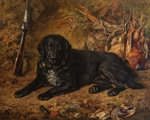 A Labrador, after a Shoot, 1887 by Jacob Bogdany - print