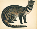 Large Indian Civet by John Reeves - print
