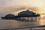 Starling flock above West Pier by James Warwick - print