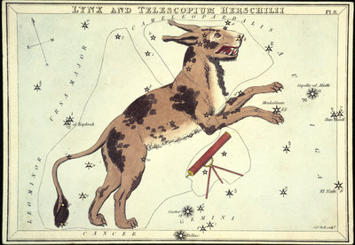 Constellation card, Urania's mirror, Lynx and Telescopium Herschilii by Sidney Hall - print