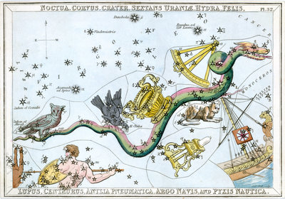 The constellation Hydra by unknown - print