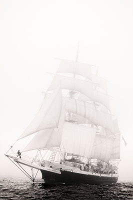 3 masted barque 'Lord Nelson' in fog during the 50th anniversary Tall Ships Race, Torbay 2006 by Richard Sibley - print