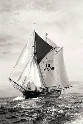 The Swedish gaff schooner 'Constantia' off Port Rush, bound for MalÔòá┬│y in Norway, during first leg of the 2008 Liverpool Tall Ships Race by Richard Sibley - print